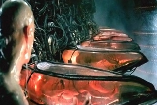 the-matrix-power-plant